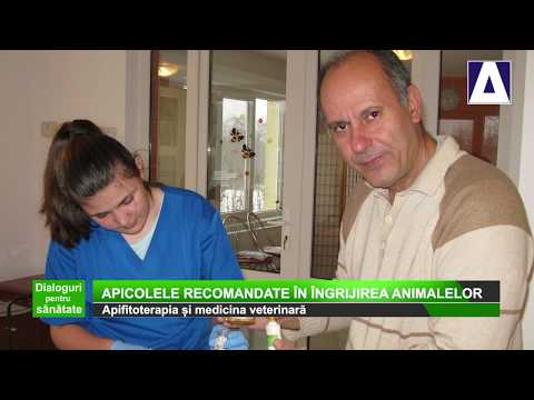 Tratament cu acid hialuronic pentru recenzii de artroză