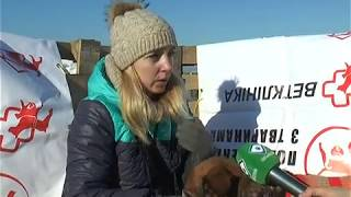 На аэродроме «Коротич» прошел Winter Dog Fest – 2018