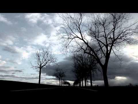 Vidéo de Sylvie Bardet
