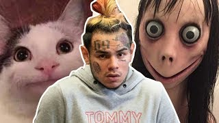 Tekashi 6ix9ine saved by polite cat