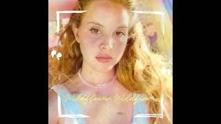 Kadr z teledysku Wildflower Wildfire tekst piosenki Lana Del Rey