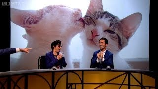 Measure aggression with cute kittens and bubble wrap - QI: Series K Episode 15 Preview - BBC Two