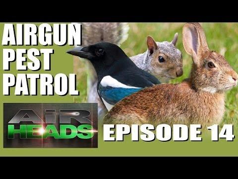 AirHeads – Airgun Pest Patrol