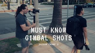 MUST-KNOW Gimbal Shots With Zhiyun Crane 2 And Sony A7R3