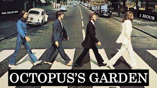 The Beatles - Octopus's Garden [1 HOUR]