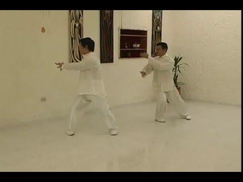 Forma Original 24 movimientos estilo Yang - Tai Chi Chuan en Bogotá
