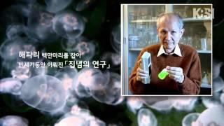 [KBSI 사이언스 스토리] 녹색 형광 단백질의 비밀