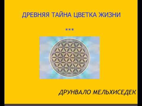 Интернет магазины запчастей в украине на чери амулет