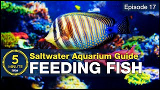 Feed your saltwater fish in a way you can be proud of. Increase health color and longevity