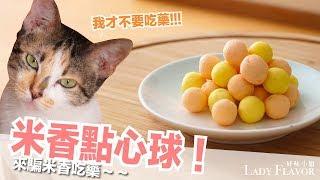 米香都不吃藥啦!騙貓吃藥料理~【貓副食食譜】好味貓廚房EP118