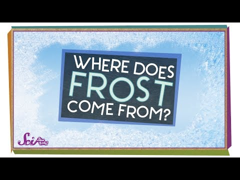 It's Time for Frost!