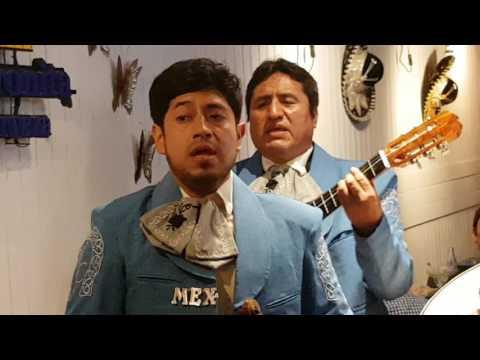 Mariachi México Canta en vivo