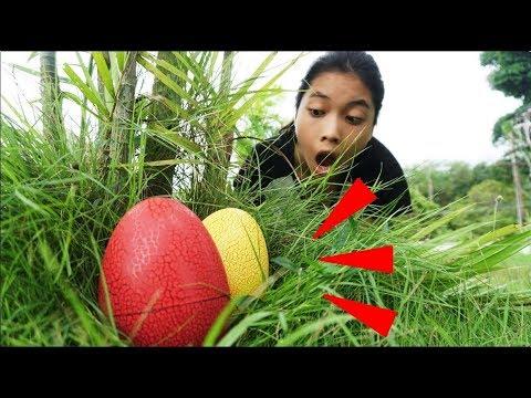 เจอไข่อะไรที่ในสวน ? | ละครสั้น Fun Family | DINOSAUR EGGS DISCOVERED!