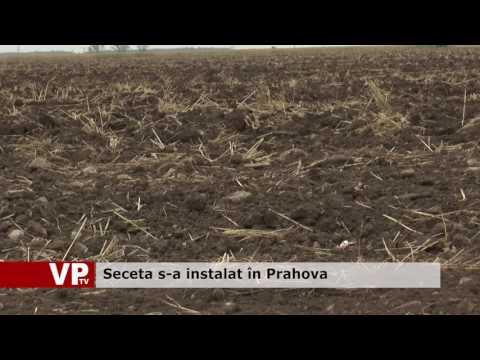 Seceta s-a instalat în Prahova