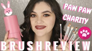 NEW Paw Paw Charity All About Eyes Brush Set Review & Demo! SHOP MISS A