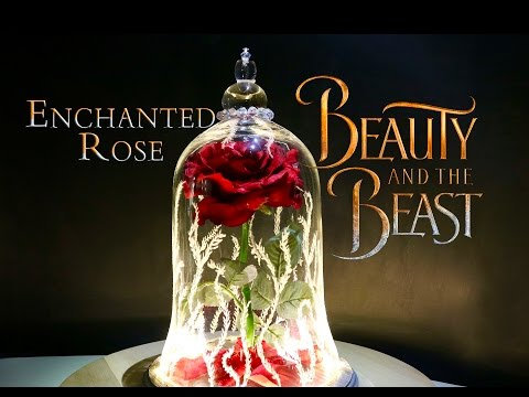 mp4 Beauty Beast Rose Replica, download Beauty Beast Rose Replica video klip Beauty Beast Rose Replica