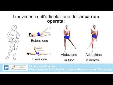 Recensioni di anca