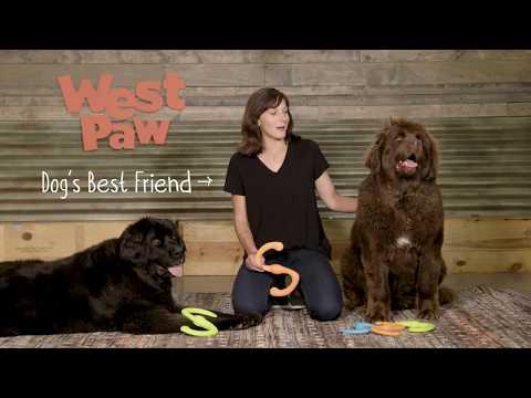 WEST PAW Zogoflex Игрушка для собак Bumi Video #1