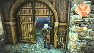 How to get the Best Saddlebag in Witcher 3