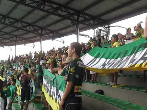 """""""Artilleria Verde Sur Quindio Vs Cucuta"""" Barra: Artillería Verde Sur • Club: Deportes Quindío"""