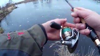 Река лесная рыбалка в брестской области