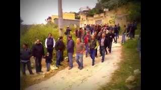 preview picture of video 'I Buoi della Festa del Ss. Crocifisso di Calatafimi'