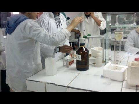 Confiture de prunes pour les diabétiques