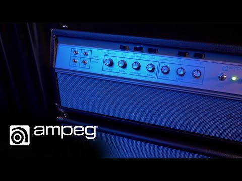 Ampeg Heritage 50th Anniversary SVT: Indepth EQ demo
