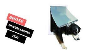 Die Besten Hundeklappen Test 2021 - (Top 5)