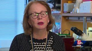 2011 CWR Funded Research: Dr. Denise Faustman – Type I diabetes