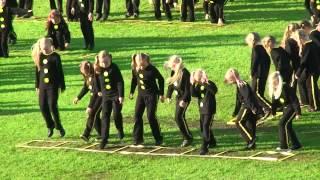 160629e0879 preview picture of video 'Tartu Võimlemispidu 2014-Lõbusad  Korstnapühkijad-03.06.14'
