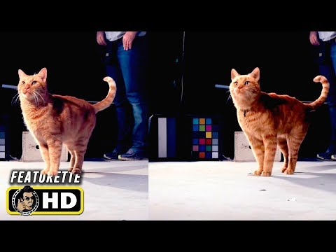 CAPTAIN MARVEL (2019) Which Goose the Cat is Real? VFX Featurette [HD]