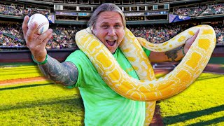 11 FOOT PYTHON THROWS OUT FIRST PITCH AT BASEBALL GAME!! | BRIAN BARCZYK