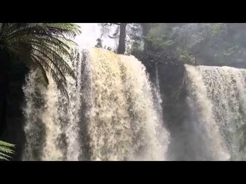 Russell Falls Mt Field National Park Tas