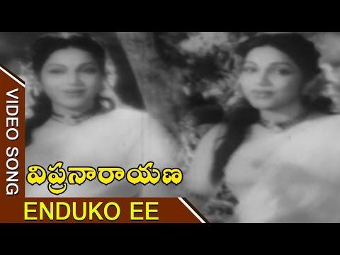 Enduko Ee Thotamali Video Song || Vipranarayana Telugu Movie || ANR, Bhanumathi, Sujatha