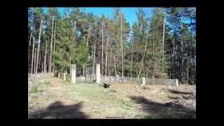 preview picture of video 'Carlsberg: Mazewot of the Jewish cemetery - Grabsteine auf dem jüdischen Friedhof'