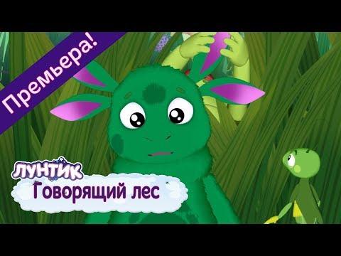 Говорящий лес 🌿 Лунтик 🌲 Новая серия! Премьера!