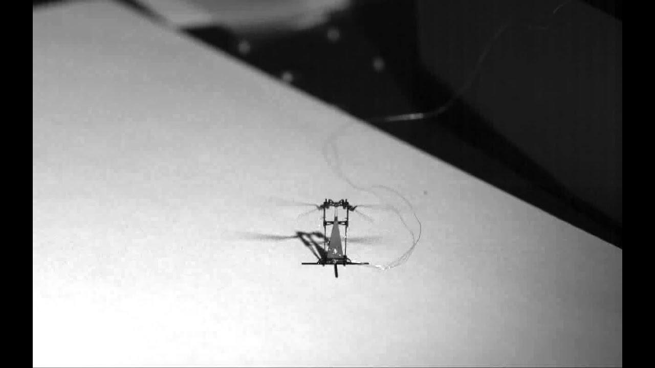 Flight Of The (Robotic Spy Drone) Bumblebee