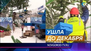 С центральной площади Великого Новгорода убирают елку