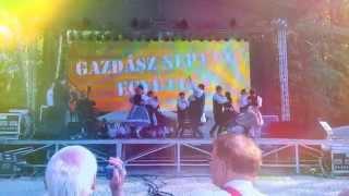 preview picture of video 'Gazdász Néptáncegyüttes, 2014.05.01., Mosonmagyaróvár, Wittmann-park'