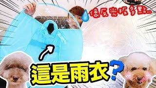 🐶淘寶買【飛碟狗雨衣💦】!覆蓋身體99%?😂這是反光板嗎…(中字)