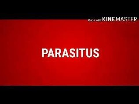 A vesék megtisztítása a parazitáktól