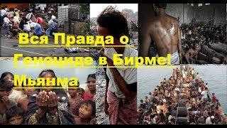 СРОЧНО! Правда о Геноциде в Бирме! Мьянма!