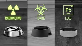Could Your Pet Bowls Be Harmful? YouTube video