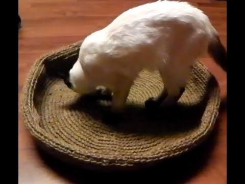 Katzenkorb Hundekorb Korb häkeln Linkshänder Anleitung - Häkelanleitung kostenlos