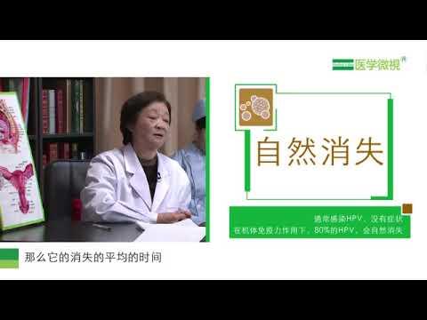 Papilloma virus nelluomo