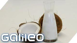 Ist Kokosöl ungesund oder gesund? | Galileo | ProSieben