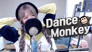 Musik-Video-Miniaturansicht zu Dance Monkey Songtext von Saesong