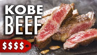 I Tasted Kobe Beef for the First Time | A5 Japanese Wagyu