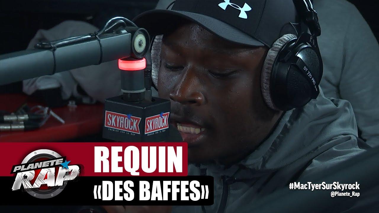 """[EXCLU] Requin """"Des baffes"""" #PlanèteRap"""